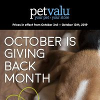 - October Is Giving Back Month Flyer