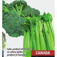 Kale or Celery Stalks or Broccoli Crowns