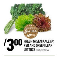 Fresh Green Kale or Red and Green Leaf Lettuce