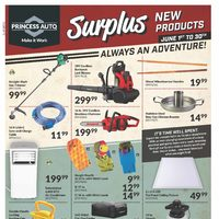 - Surplus Flyer