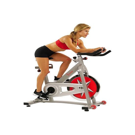 1. Editor's Pick: Sunny Health & Fitness SF-B901