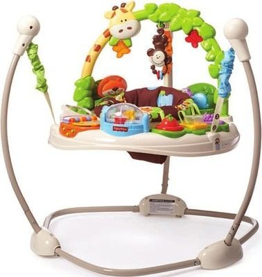 4ca9d558cc29 Toys R Us  Fisher-Price Go Wild Jumperoo - RedFlagDeals.com